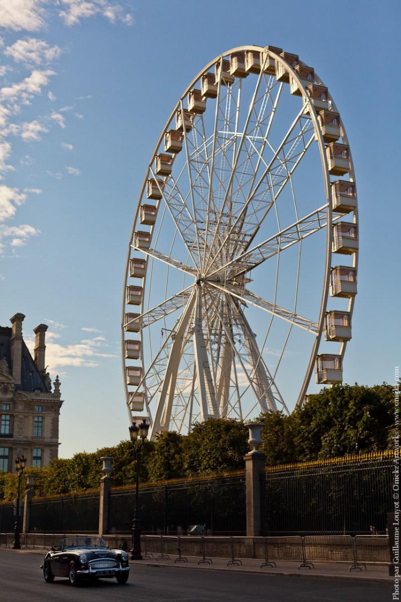 Tuileries Juin 2011