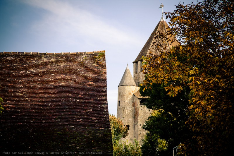 Provins 2013 - photo 37104 par Guillaume Louyot © Onickz Artworks