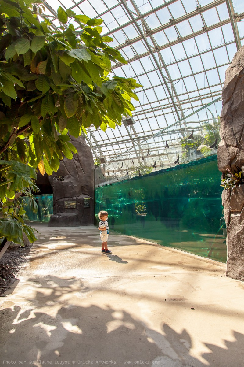 La serre du Zoo de Vincennes